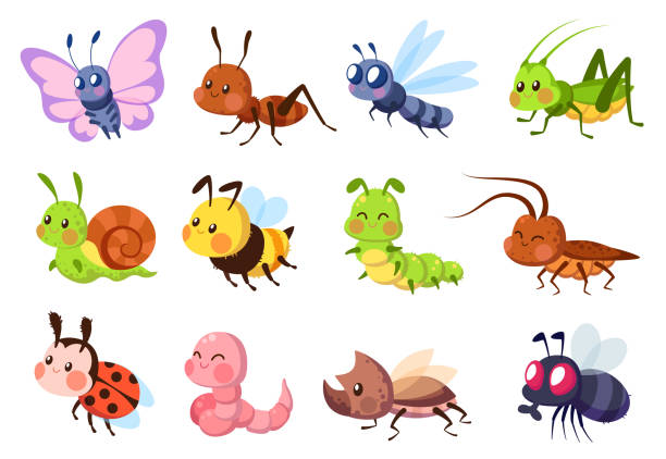 Cute insects. Bugs creatures bee and ladybug, worm, snail and butterfly, caterpillar. Mantis, dragonfly and fly cartoon vector set Cute insects. Bugs creatures bee and ladybug, worm, snail and butterfly, caterpillar. Mantis, dragonfly and fly funny cartoon vector wildlife set animal stock illustrations