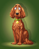 Vector illustration of a cute dog, an Irish Setter with a beautiful long shiny fur, sitting in the spotlight, looking at the camera in front of a green background.