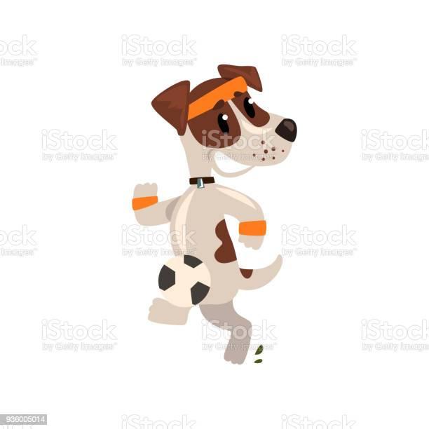 Cute jack russell terrier athlete jogging funny sportive pet dog vector id936005014?b=1&k=6&m=936005014&s=612x612&h=sn82h6zup2mbybiqmndhfiz2bhjcdttyrajctjledvi=