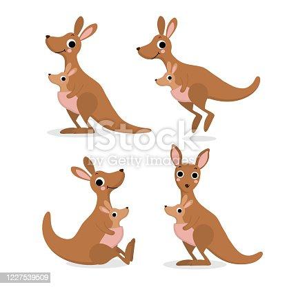 Cute kangaroo and baby, joey collection. Australia animal wildlife cartoon character set. -Vector