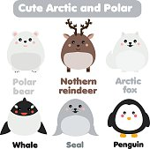Cute kawaii arctic and polar animals. Children style, isolated design elements, vector. Seal, whale, penguin