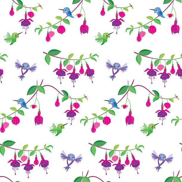 Cute kawaii hummingbird fuchsia pattern vector art illustration