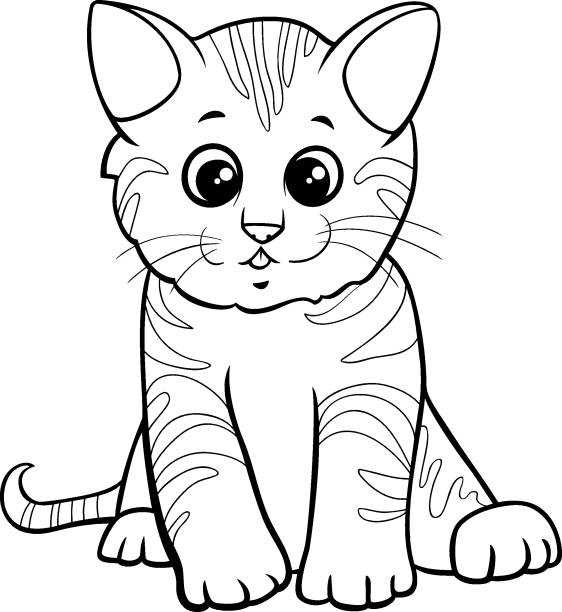 1 269 Baby Kitten Coloring Pages Illustrations Clip Art Istock
