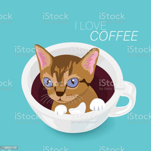 Cute kitten in coffee cup with text on green background vector id1185241181?b=1&k=6&m=1185241181&s=612x612&h=nlt9izzkqxxmrag6nboqc4xphq7oib04nvdme8qexl0=