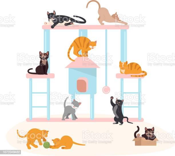 Cute kittens play vector id1072049432?b=1&k=6&m=1072049432&s=612x612&h=9wm5uzfack4gjrjelw34twqwrmlmtwizvpjhlhcltg4=
