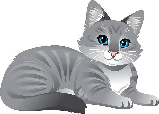 cute kitty cat - heyheydesigns stock illustrations