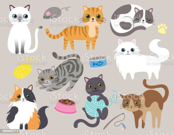 Cute kitty cat vector illustration vector id899880274?b=1&k=6&m=899880274&s=612x612&h=wvd10vccrkizgrv0rygitjfjjnekozovmg9kjseglri=
