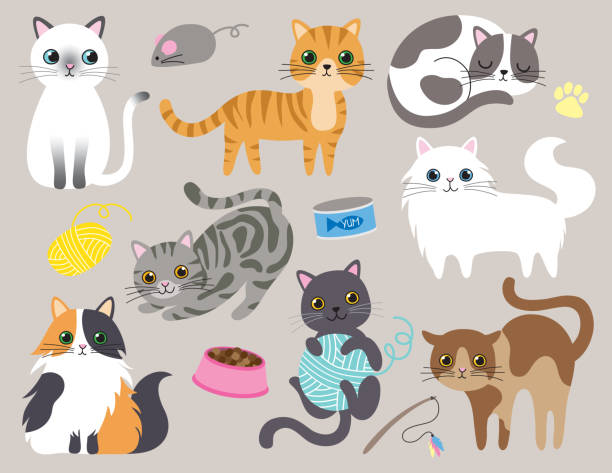 cute kitty cat vector illustration - cat stock illustrations, clip art, cartoons, & icons