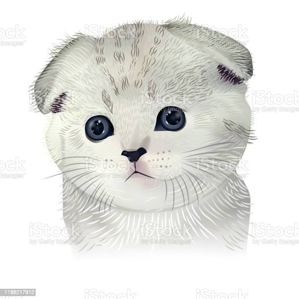 Cute kitty isolated on white background vector cat for project abd vector id1188217912?b=1&k=6&m=1188217912&s=612x612&h=4pvilisob3jhzlloecrggmjideh5rowv olq3oebzsa=