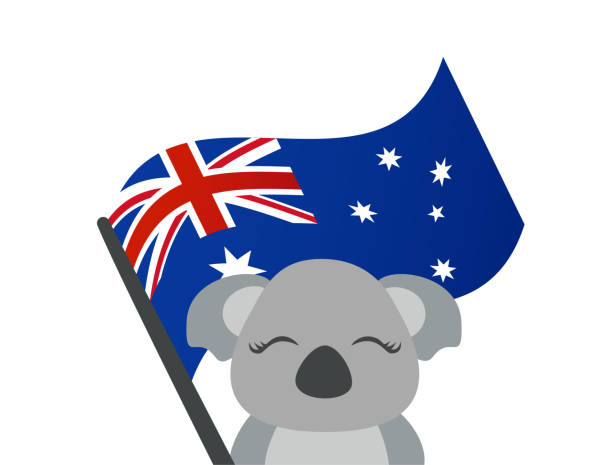 cute koala holding austraiian flag vector - koala stock illustrations