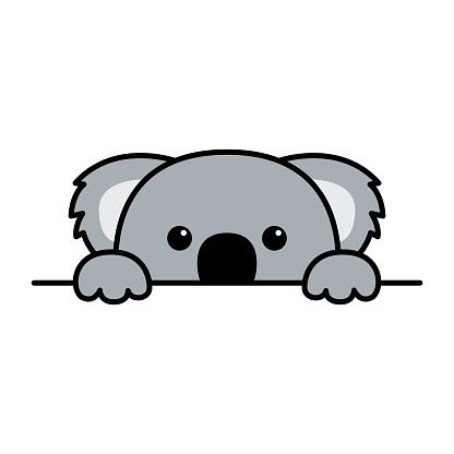 Cute koala paws up over wall, koala peeking cartoon icon, vector illustration