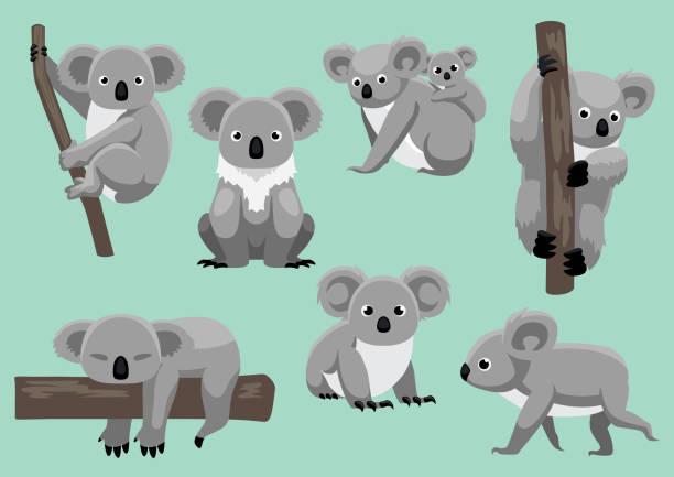 Cute Koala Seven Poses Cartoon Vector Illustration Animal Cartoon EPS10 File Format koala stock illustrations