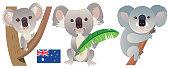 istock Cute Koala 1211554288
