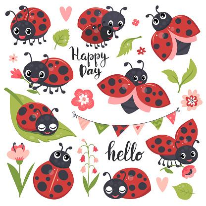 Cute ladybird set.