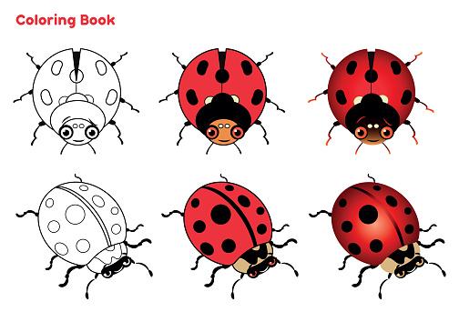 Cute ladybug coloring book