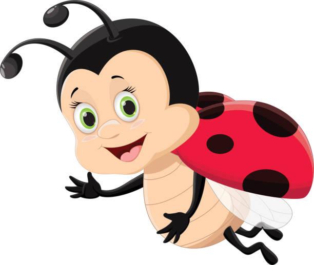 cute ladybug flying isolated on white background – artystyczna grafika wektorowa