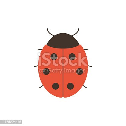 Cute ladybug in flat style isolated on white background - simple vector illustration of red insect with black dots for natural design.