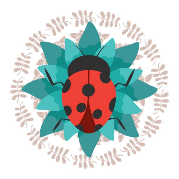 Royalty free cartoon of the ladybug invitation template clip art cartoon of the ladybug invitation template clip art vector images illustrations stopboris Image collections