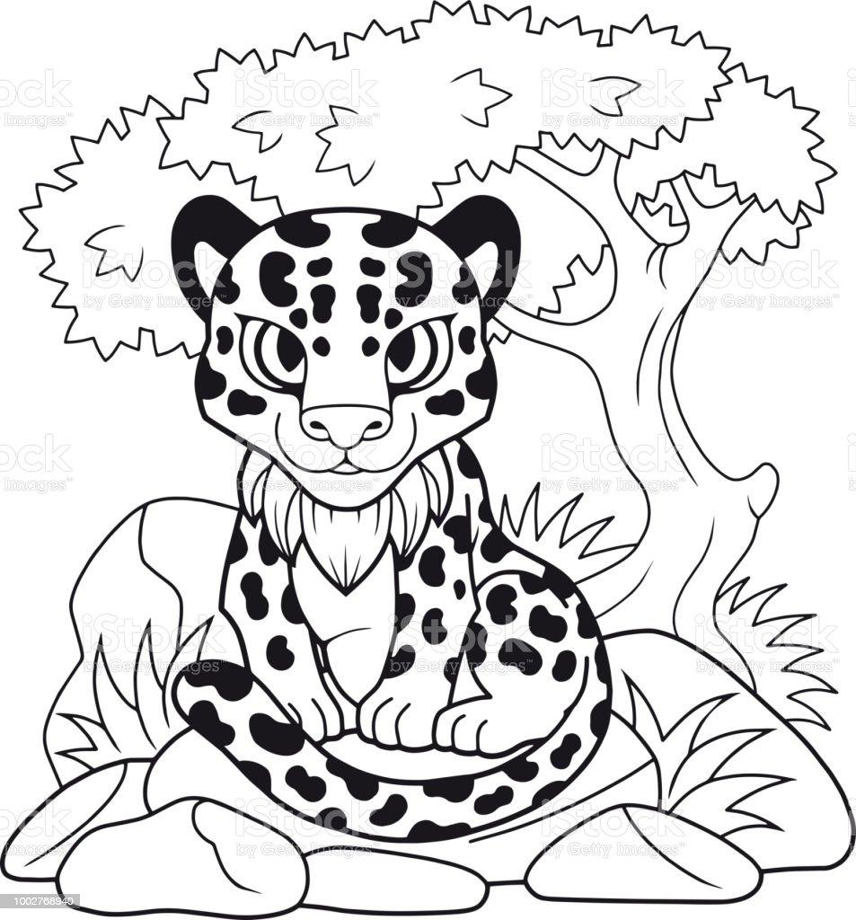 Coloriage Bebe Leopard.Cute Leopard Illustration Drole Cahier De Coloriage Vecteurs Libres