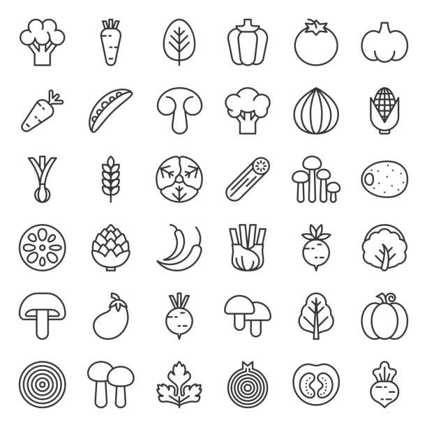 Cute line vegetable icon set – artystyczna grafika wektorowa