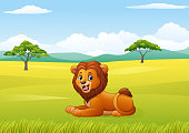 Cute lion sitting in jungle