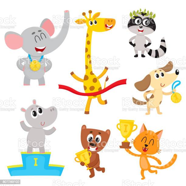 Cute little animal characters champions winners holding medals cups vector id807289102?b=1&k=6&m=807289102&s=612x612&h=myljvs6htul9rztgb9qigq4pactr57iuy8arqerz4ta=