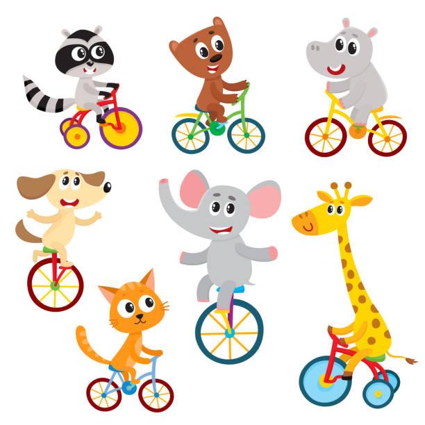niedliche kleine tiere figuren reiten, einrad, fahrrad, dreirad, radsport - lustige fahrrad stock-grafiken, -clipart, -cartoons und -symbole
