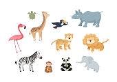 Wild jungle creatures isolated on white background.