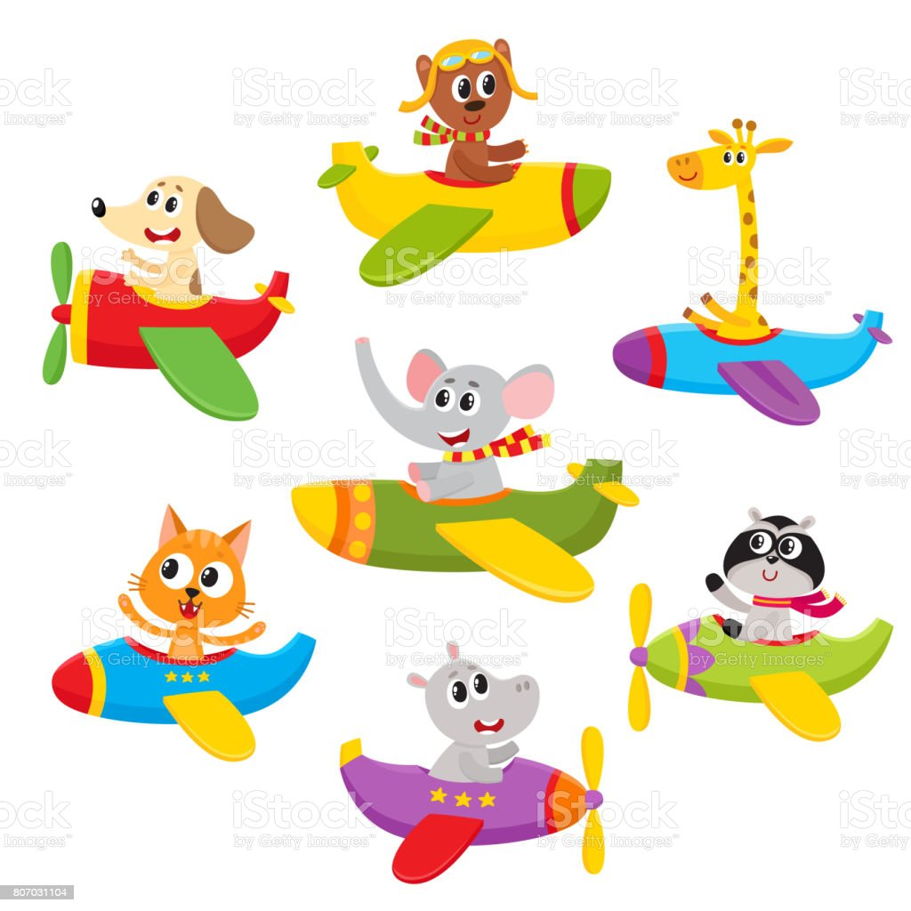 cute little baby animal pet characters flying on planes airplanes