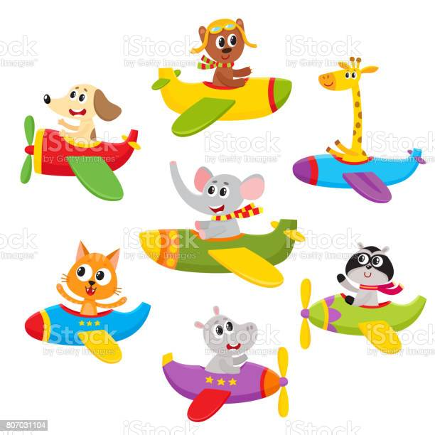 Cute little baby animal pet characters flying on planes airplanes vector id807031104?b=1&k=6&m=807031104&s=612x612&h=ylahfe  g0pvfouwaecm9hx10ww4p57v0mh8r64pqf0=