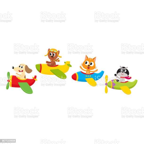 Cute little baby animal pet characters flying on planes airplanes vector id807033908?b=1&k=6&m=807033908&s=612x612&h=dkr05btqo5hkeqyhumn024r qjf 6bpcy  8fteyq5y=