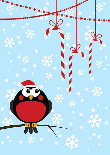 süße kleine vogel mit weihnachten-bonbons - dompfaff stock-grafiken, -clipart, -cartoons und -symbole