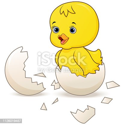 Illustration of Cute little cartoon chick hatched from an egg isolated on a white background