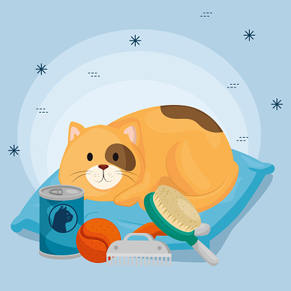 cute little cat in cushion and icons for care