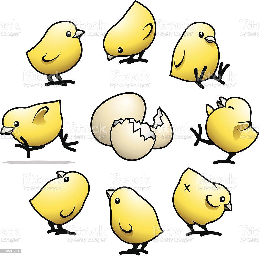 Cute Little Chicks vector art illustration