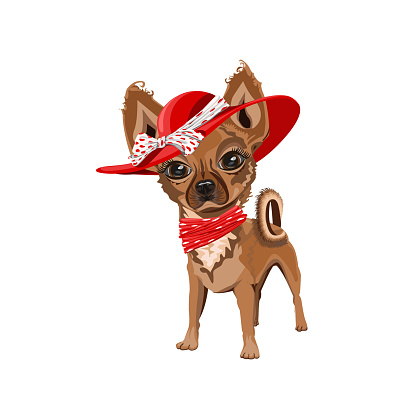 Cute little dog in a red hat with a bow