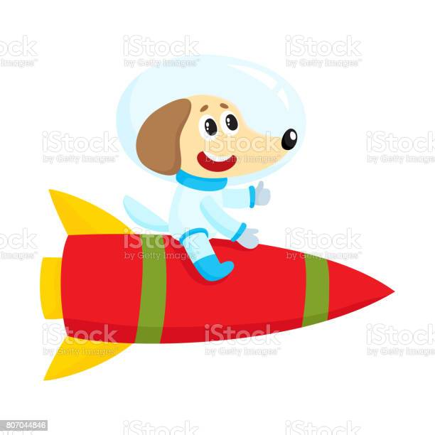 Cute little dog puppy astronaut spaceman character riding a rocket vector id807044846?b=1&k=6&m=807044846&s=612x612&h=qqrbsiwpve1hr ghzh30zghrm5wr7eyl4htgshwzrv8=