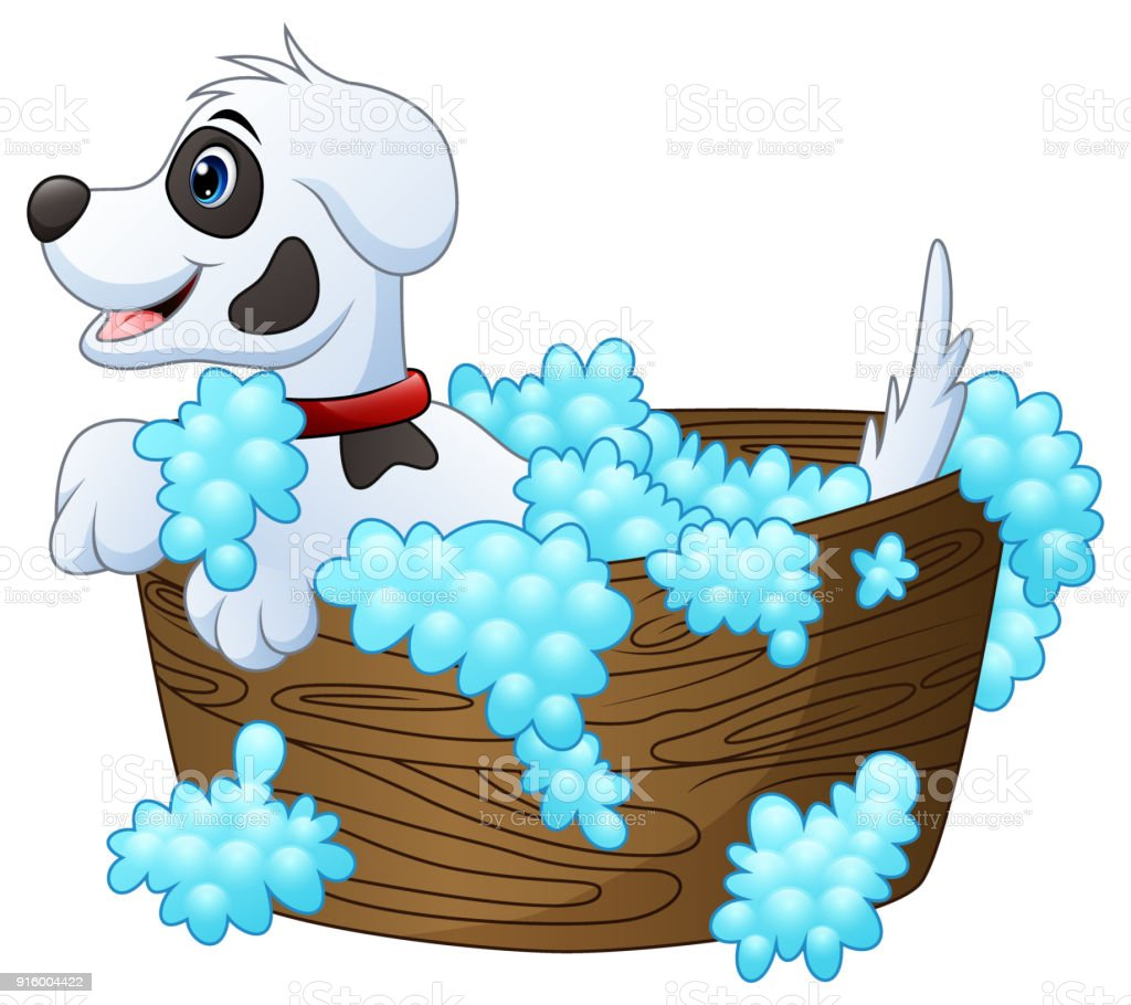 Cute little dog taking a bath on a white background vector art illustration