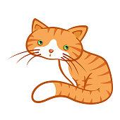 istock Cute Little Ginger Cat Sitting Still Looking Sad 1295623829