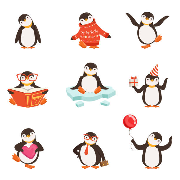cute little penguin cartoon characters set for label design. colorful detailed vector illustrations - penguin stock illustrations