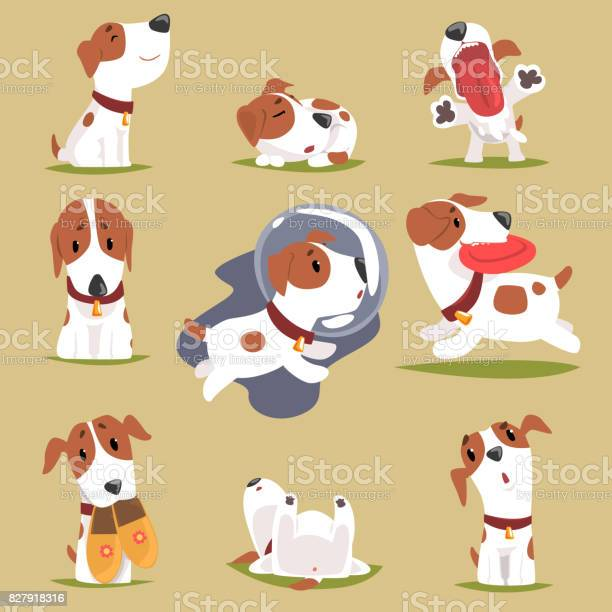 Cute little puppy in his evereday activity set dogs daily routine vector id827918316?b=1&k=6&m=827918316&s=612x612&h=u2jwn3 3fpuj4o9y48qv03lbyouoc kwkhix2ntlov0=