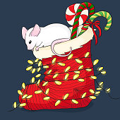Cute vactor hinese new year symbol illustration of mouse