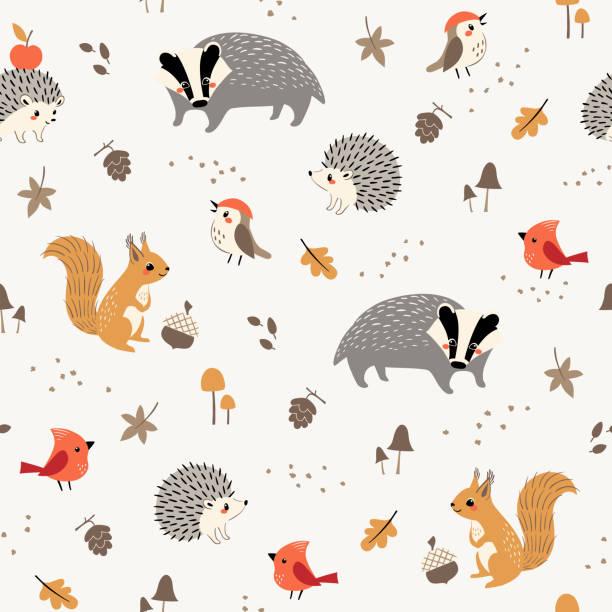 süße kleine waldtiere und vögel muster - igel stock-grafiken, -clipart, -cartoons und -symbole