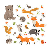 Set of cute forest animals, mushrooms, berries, leaves and acorns isolated on white background.