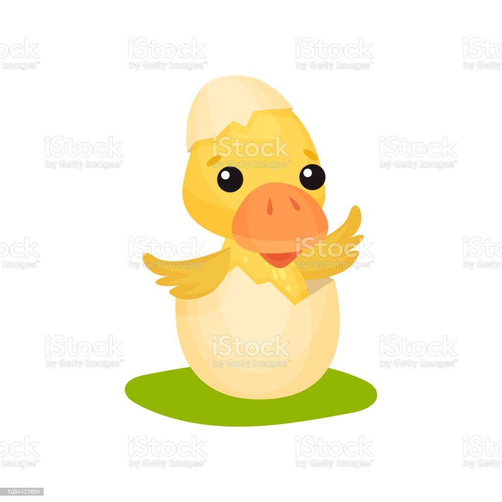 かわいい黄色のアヒル キャラクター白地に卵ベクトル図から孵化