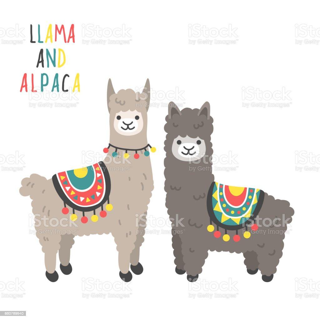royalty free llama clip art vector images illustrations istock rh istockphoto com llama clipart outline llama clipart outline