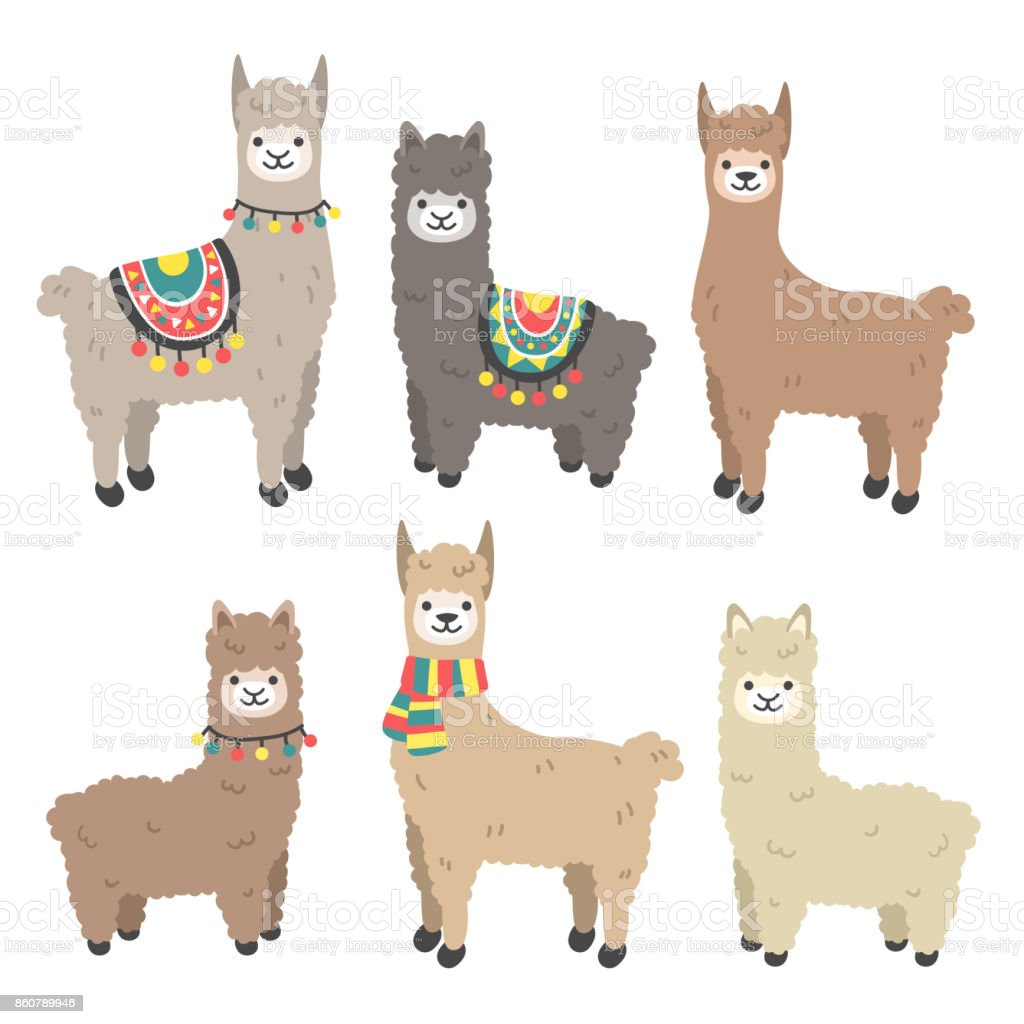 Cute llama and alpaca set vector art illustration