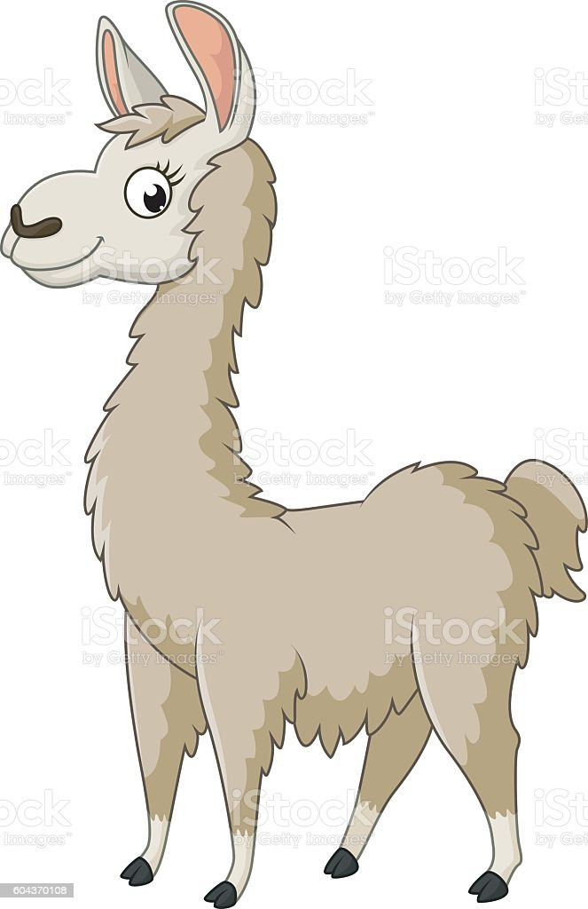 royalty free alpaca clip art vector images illustrations istock rh istockphoto com alpaca clip art black and white alpaca clip art
