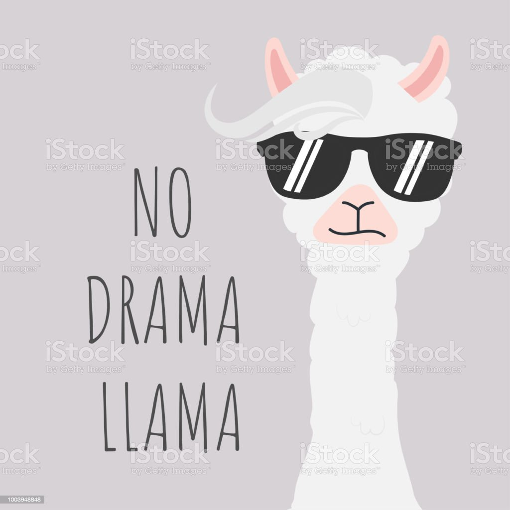 Llamas Quotes Inspirational: Cute Llama Design With No Drama Motivational Quote Stock
