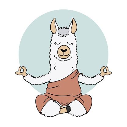 Cute llama doing yoga